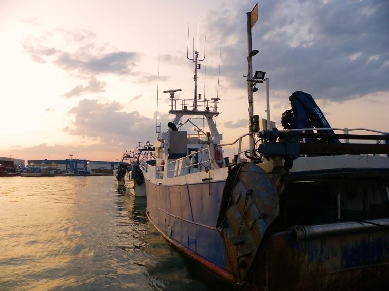barcos pesqueros amarrados en el puerto de santa pola