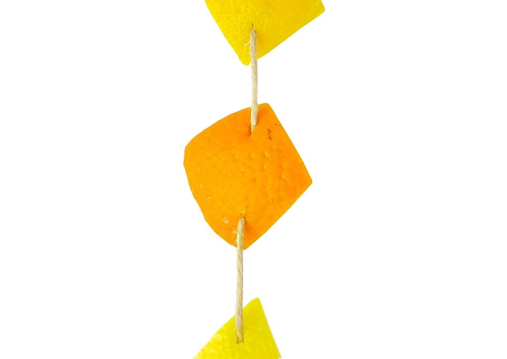 rodajas de naranja y limon con cuerda de yute