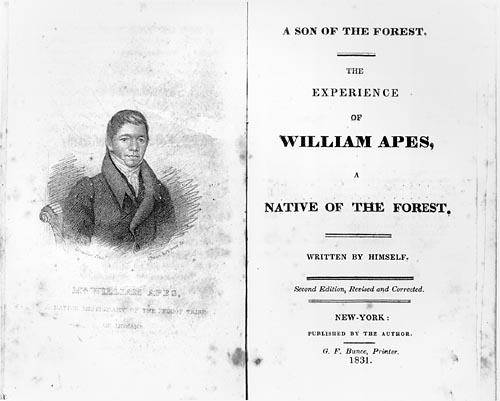 Williamapes