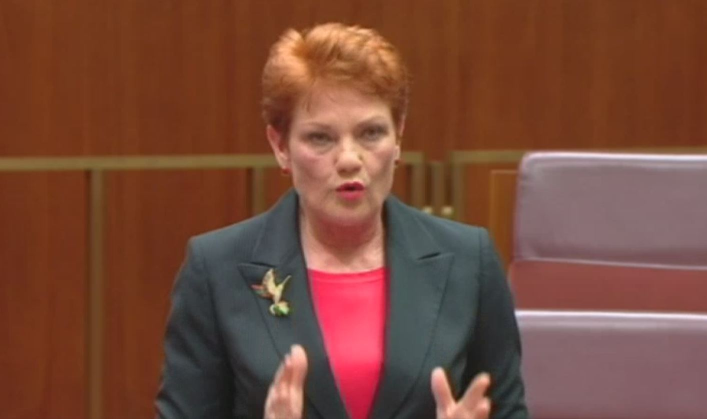 The Outrage Industry Just Loves Pauline Hanson