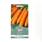 Mr.Fothergill's Carrot (Flyaway F1) 500 Seeds
