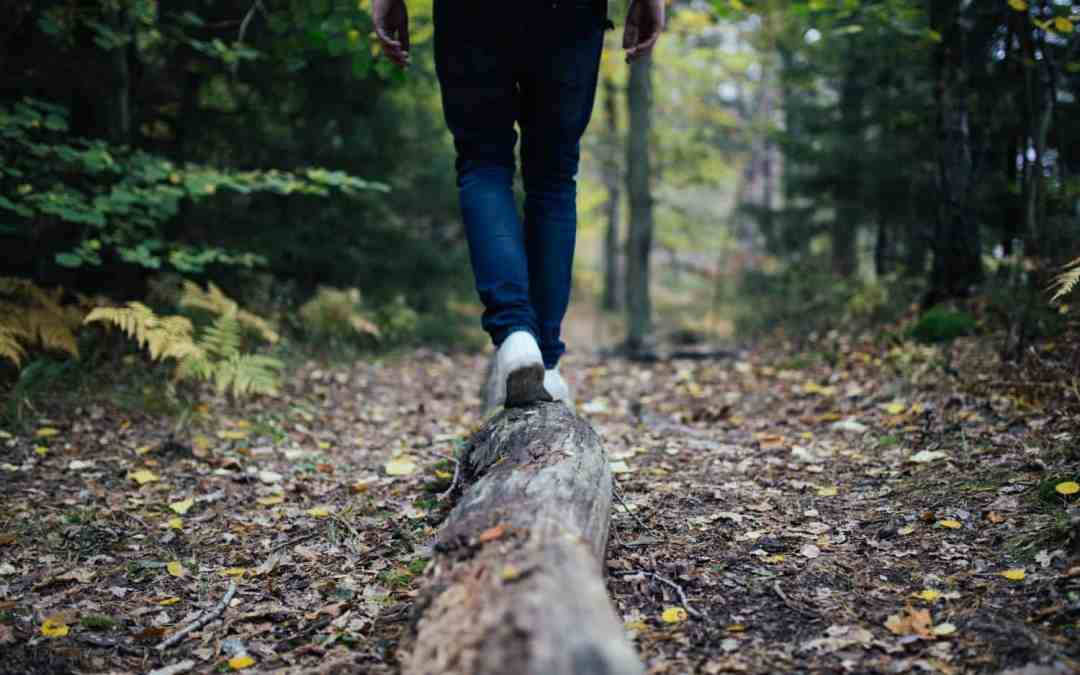 It's Not Always You: Why People Leave Your Church and How to Keep Them