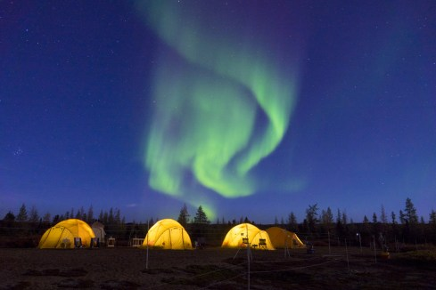 Northern lights over tundra camp at Schmock Lake on the Arctic Safari. Jad Davenport photo.
