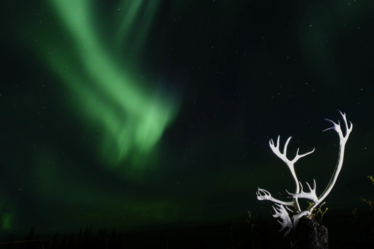 Northern lights over Nanuk. Jad Davenport photo.