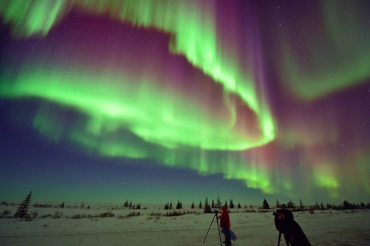Aurora borealis lights up the snow at Nanuk Polar Bear Lodge.