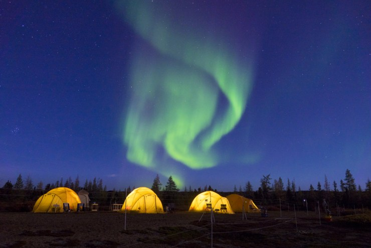 Aurora borealis over the tundra camp on our Arctic Safari. Jad Davenport photo.