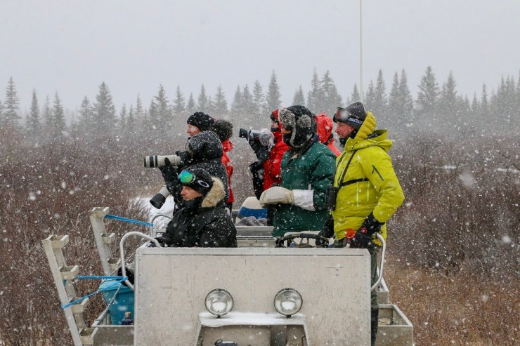Photographing in the snow at Nanuk Polar Bear Lodge. Karl Biesemier photo.
