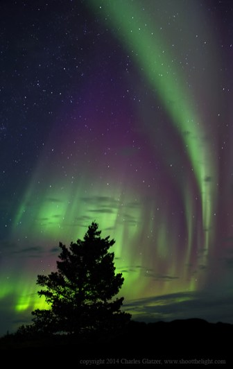 Aurora borealis over Nanuk Polar Bear Lodge. Charles Glatzer photo.