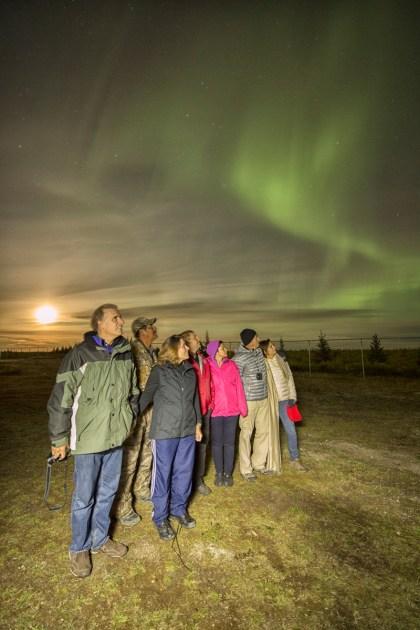 Guests and northern lights at Nanuk Polar Bear Lodge.