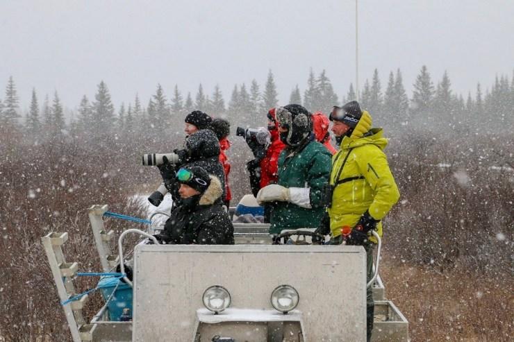 Snow flurries on the Polar Bear Photo Safari at Nanuk Polar Bear Lodge. Photo by guest Karl Biesemier.