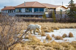 churchill-wild-nanuk-polar-bear-lodge-john-donelson