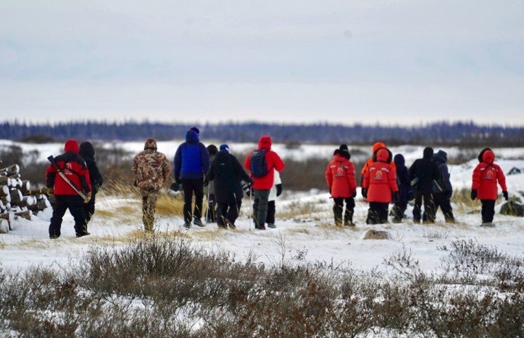 Guests walking out to see polar bears at ground level. Seal River Heritage Lodge. Denae D' Arcy photo.