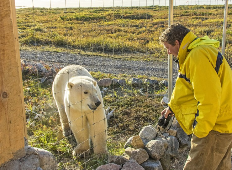 The ability to get along with polar bears is an asset.