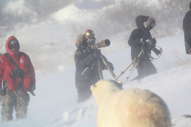 Bear in a storm with photographers. Polar Bear Photo Safari. Seal River Heritage Lodge. Redeana Villeneuve photo.