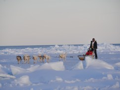 Dogsledding from Seal River Heritage Lodge out to the floe edge