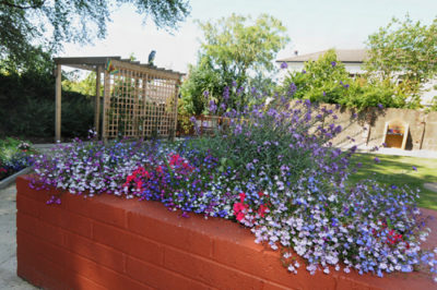 Outdoor Flowers at Holemwood Residential care Home