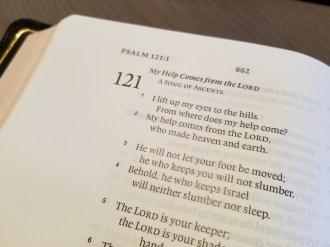ESV Preaching Bible text layouts