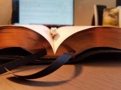 ESV Preaching Bible Ribbons