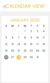 LectioDivinaJournal Calendar View