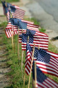 Row of USA Flags 1