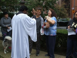 blessing-of-pets-2016-013