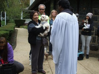blessing-of-pets-2016-015