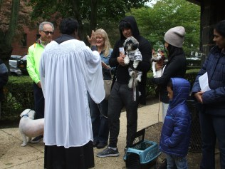 blessing-of-pets-2016-017