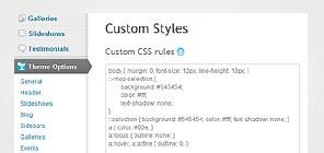 Custom CSS styles
