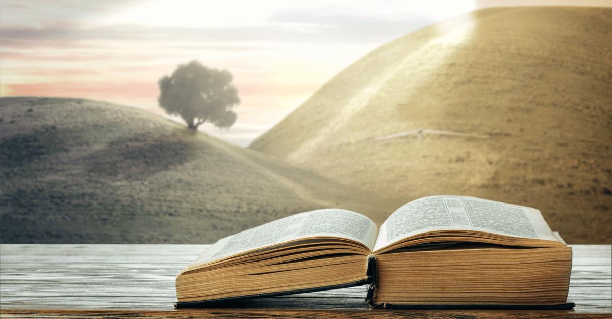 Blog | 基督教主恩堂