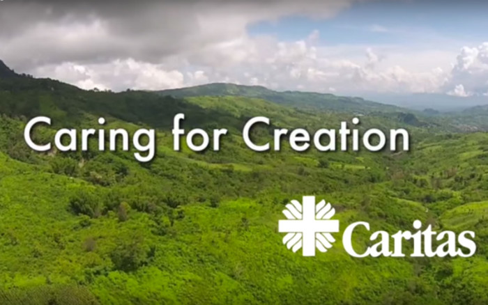 Why Christians Must Care for Gods Creation Explained by