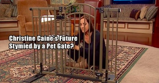 Christine Cain - dog gate