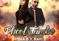 Bollywood Remix 2019 Phool Tumhe By Ravi B & Nisha B