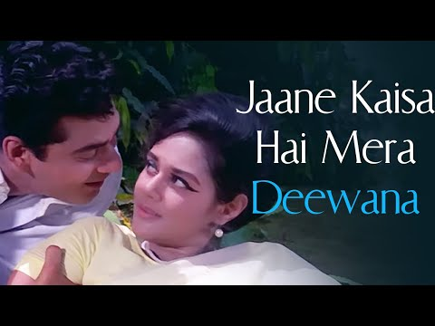 Jaane Kaisa Hai Mera Deewana | Ansoo Ban Gaye Phool (1969) | Kishore Kumar, Asha Bhosle Hits