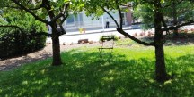 chỗ ngồi dưới bóng cây