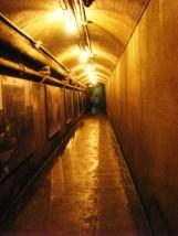đường hầm nối liền các tòa nhà