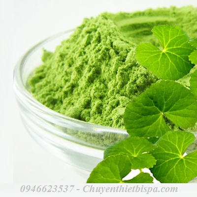 centella-powder