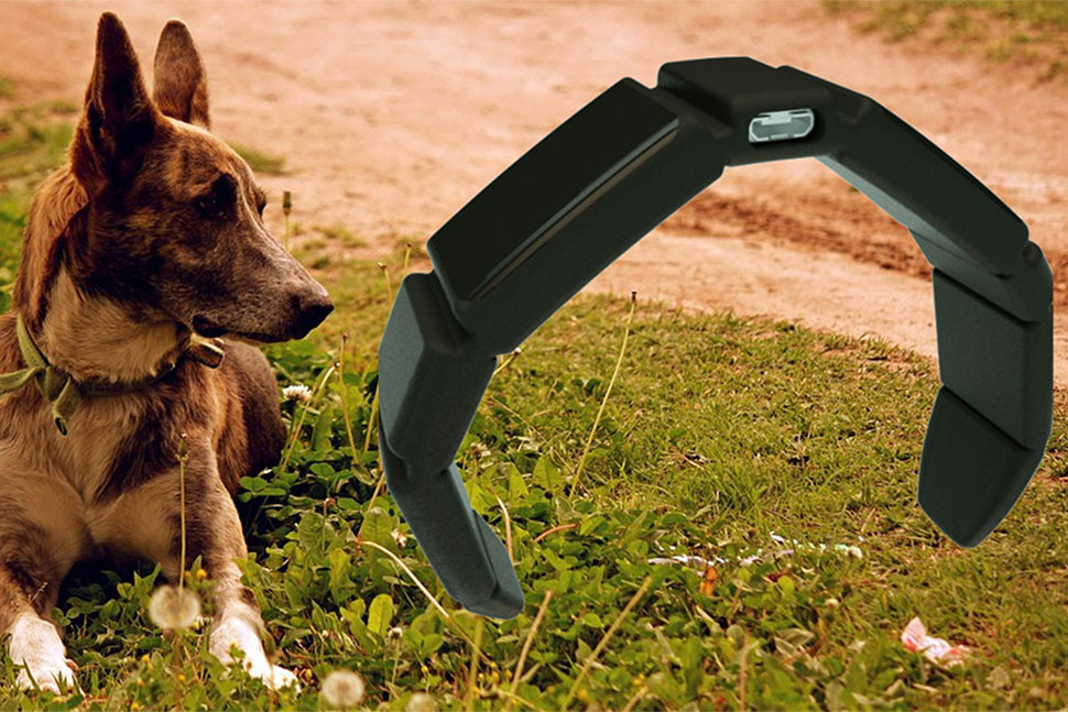 S Trakz už nikdy neztratíte psa