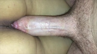 Trying to Impregnate her Before Her New Bull Knocks Her Up (Cuck Breeding)
