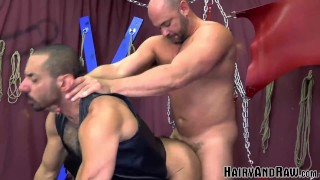HAIRYANDRAW Mature Sub Amir Badri Hammered By Muscle Daddy
