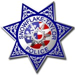 Police Badge 2013
