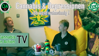 Photo of Cannabis & Depressionen, Burnout, Angstzustände