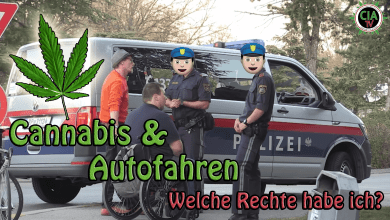 Photo of Mit Cannabis Auto fahren  – Welche Rechte hast du bei der Polizei