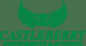 Castleberry Instruments & Avionics