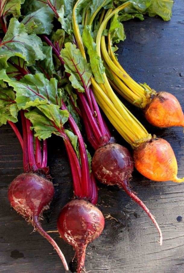 Bunch of Red and Golden Beets with Green Tops on Rustic Table
