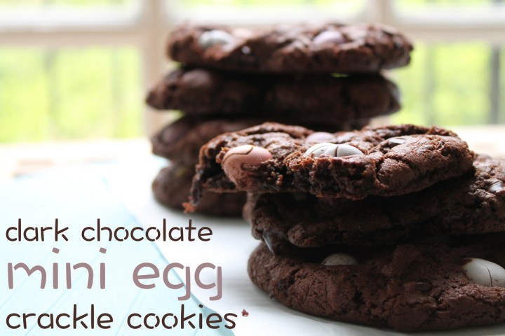 dark chocolate mini egg crackle cookies