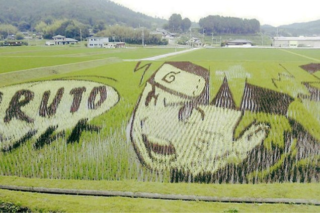 Tanbo-Art-Giant-Illustrations-Rice-Fields-Japan-1