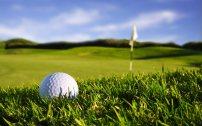 golf immagine