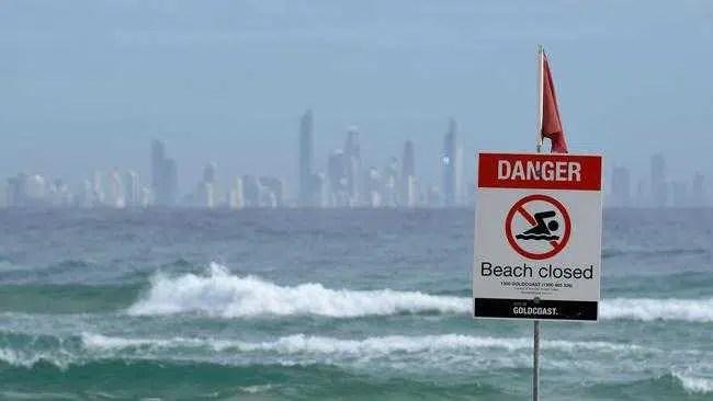 Redes verificadas horas antes do ataque mortal da Gold Coast