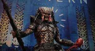 Predator voltará para a quinta parcela