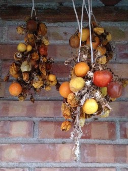 Agriturismo I Moresani - Pomodori Secchi